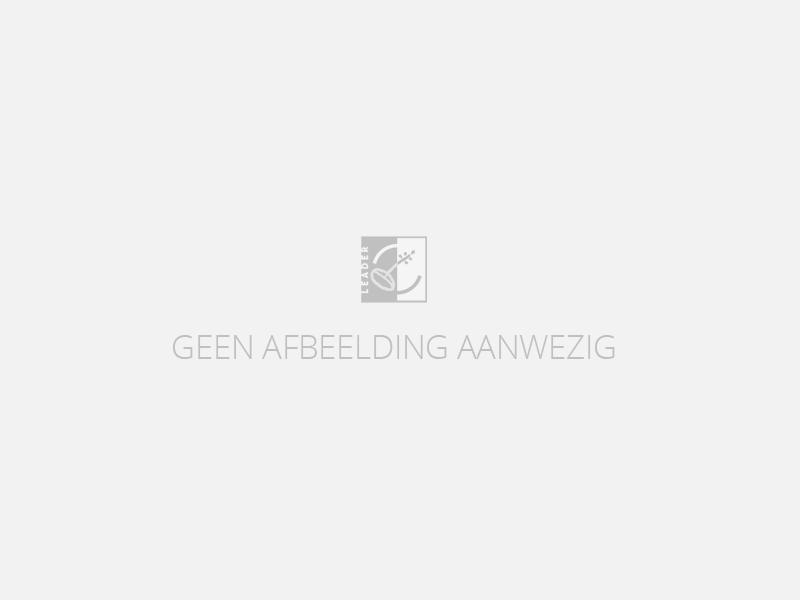 toekomst sterftecijfers nederland
